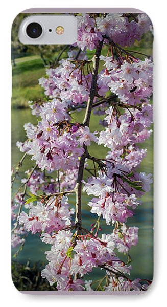 Spring Blossoms IPhone Case by Brian Wallace