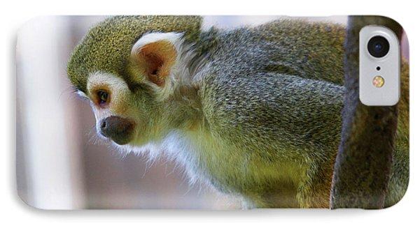 Squirrel Monkey IPhone Case by Afrodita Ellerman