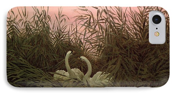 Swans In The Reeds IPhone Case