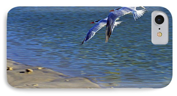 2 Terns In Flight IPhone Case