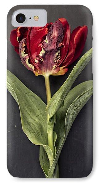 Tulip iPhone 7 Case - Tulip by Nailia Schwarz