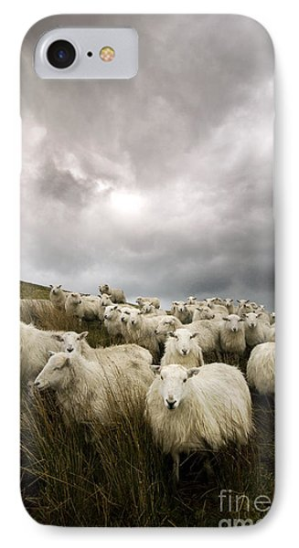 Sheep iPhone 7 Case - Welsh Lamb by Angel Ciesniarska