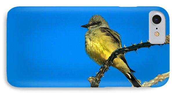 Western Kingbird Phone Case by Robert Bales