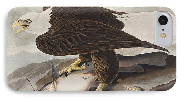 White-headed Eagle IPhone Case