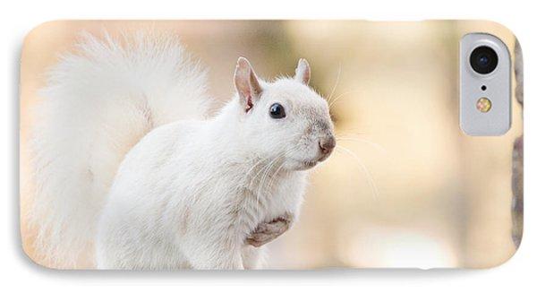 White Squirrel IPhone Case by Vizual Studio