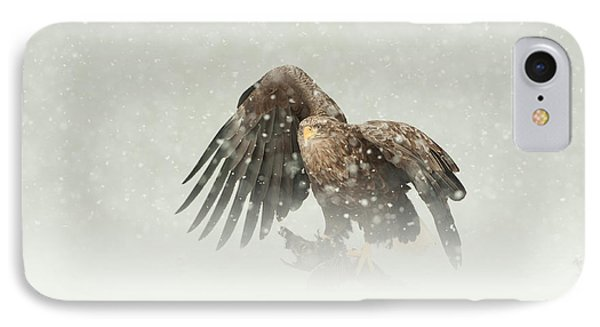 White-tailed Eagle Phone Case by Andy Astbury