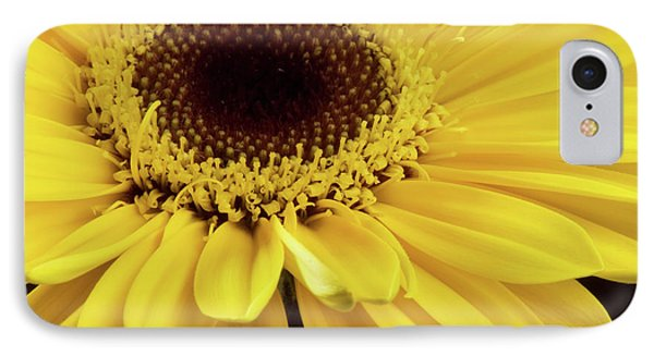 Yellow Gerbera Daisy IPhone Case by JT Lewis
