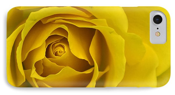 Yellow Rose IPhone Case by Adrian LaRoque