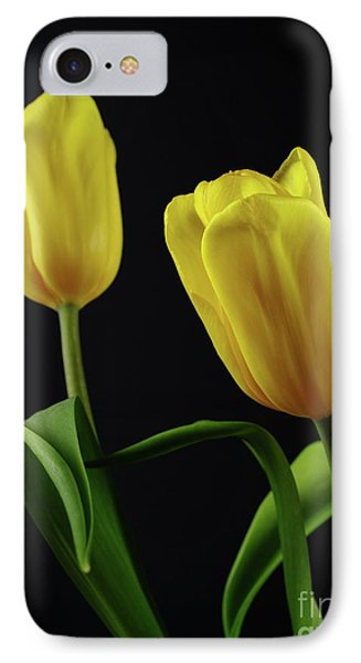 IPhone Case featuring the photograph Yellow Tulips by Dariusz Gudowicz