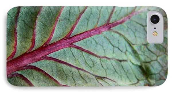 2010 Hydrangea Leaf Close Up 5 Phone Case by Robert Morin