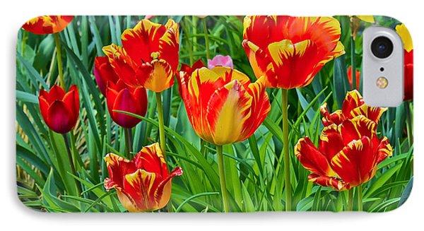 2015 Acewood Tulips 6 IPhone Case by Janis Nussbaum Senungetuk