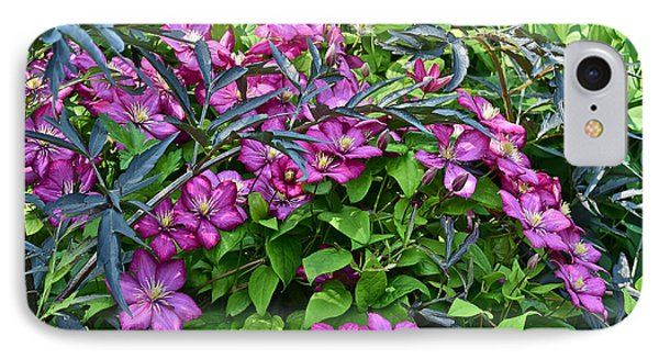 2015 Summer At The Garden Beautiful Clematis IPhone Case