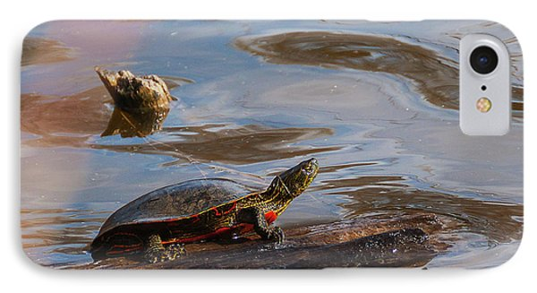 2017 Painted Turtle IPhone Case