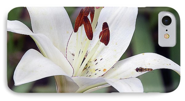 White Lily IPhone Case by Elvira Ladocki