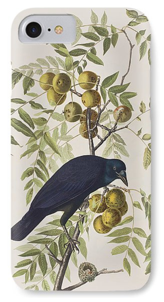 American Crow IPhone Case by John James Audubon