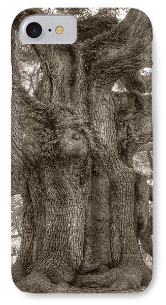 Angel Oak Live Oak Tree IPhone Case by Dustin K Ryan