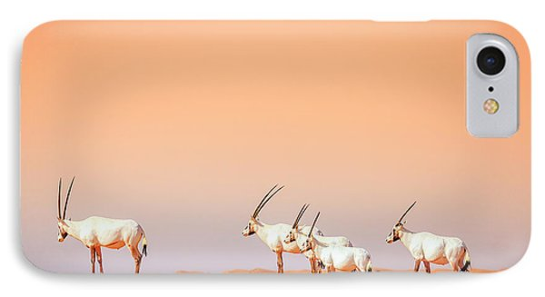 IPhone Case featuring the photograph Arabian Oryx by Alexey Stiop