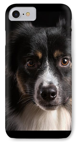 Australian Shepherd IPhone Case by Verena Matthew