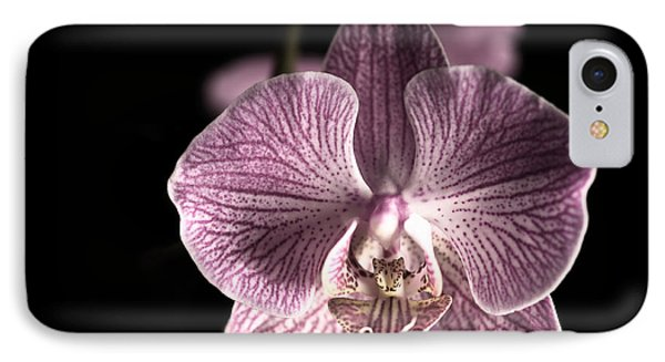 Close Up Shoot Of A Beautiful Orchid Blossom IPhone Case