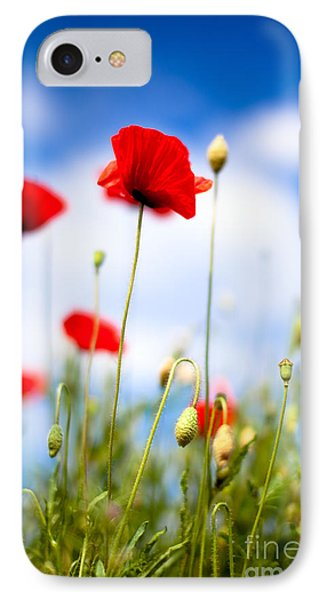 Corn Poppy Flowers IPhone Case
