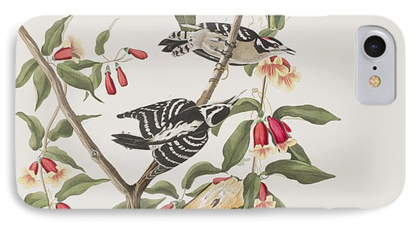 Downy Woodpecker IPhone 7 Case