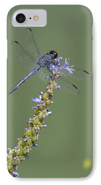 Dragon Fly Phone Case by Linda Geiger