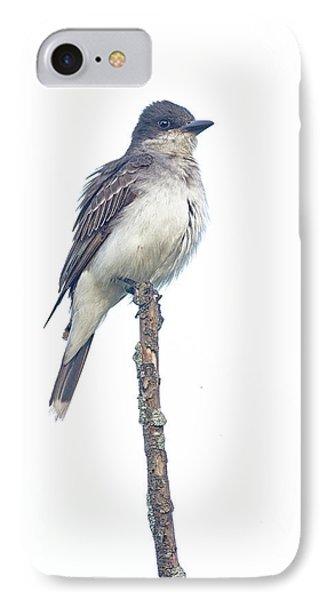Eastern Kingbird IPhone Case