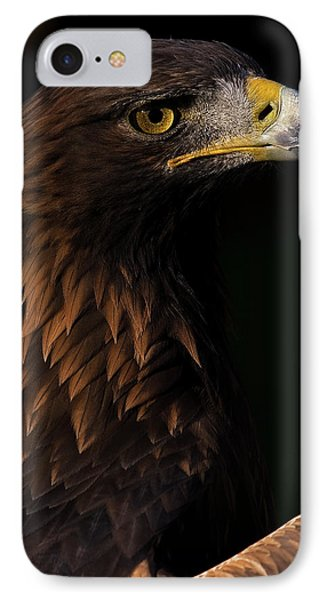 IPhone Case featuring the photograph European Golden Eagle by JT Lewis