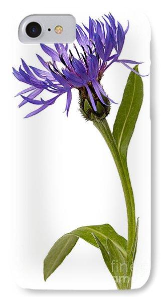 Flowers IPhone Case by Tony Cordoza