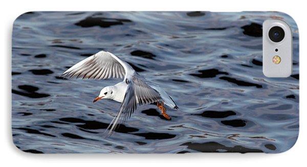Flying Gull IPhone Case by Michal Boubin