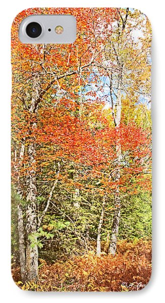 IPhone Case featuring the digital art Forest Interior Autumn Pocono Mountains Pennsylvania by A Gurmankin