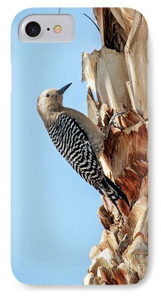 Gila Woodpecker IPhone Case by Robert Bales