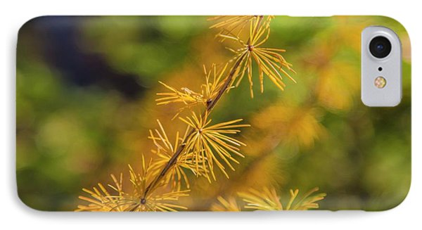Golden Autumn IPhone Case by Veikko Suikkanen