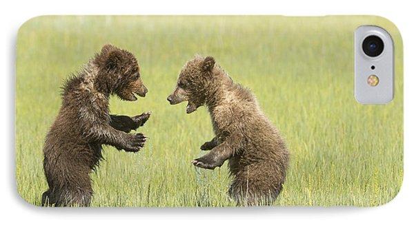 Grizzly Bear  Ursus Arctos Horribilis IPhone Case by Daisy Gilardini