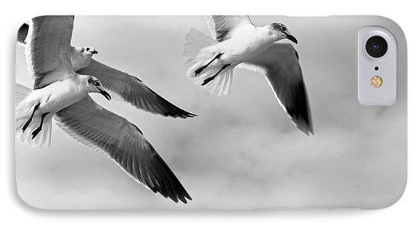 3 Gulls IPhone Case by Robert Och