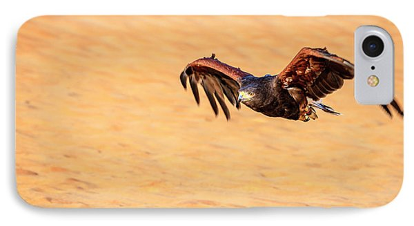 IPhone Case featuring the photograph Harris Hawk by Alexey Stiop