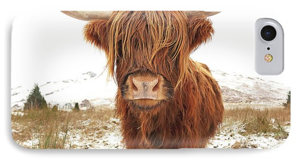 Cow iPhone 7 Case - Highland Cow by Grant Glendinning
