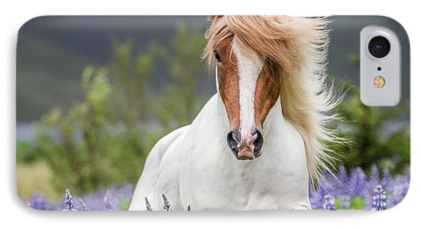 Horse Running By Lupines. Purebred IPhone Case by Panoramic Images