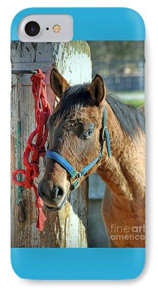 Horse IPhone Case by Savannah Gibbs