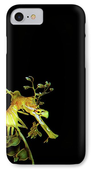 3 Horses IPhone Case by James Roemmling