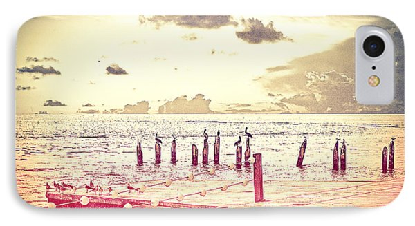 Key West Pelicans IPhone Case by Chris Andruskiewicz