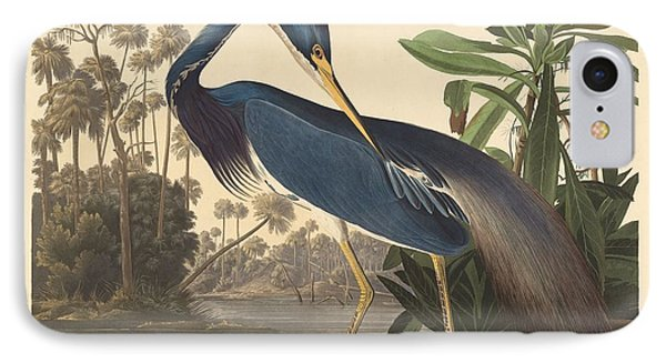 Louisiana Heron IPhone Case by Rob Dreyer