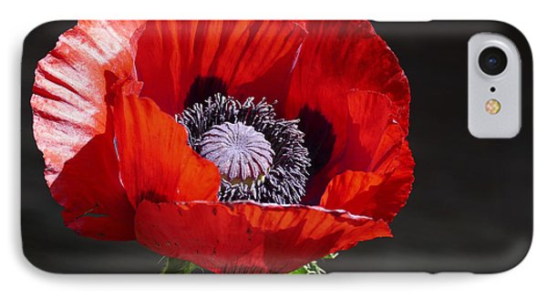 Red Poppy IPhone Case by James Johnson