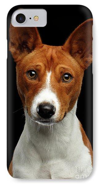 Pedigree White With Red Basenji Dog On Isolated Black Background IPhone 7 Case by Sergey Taran