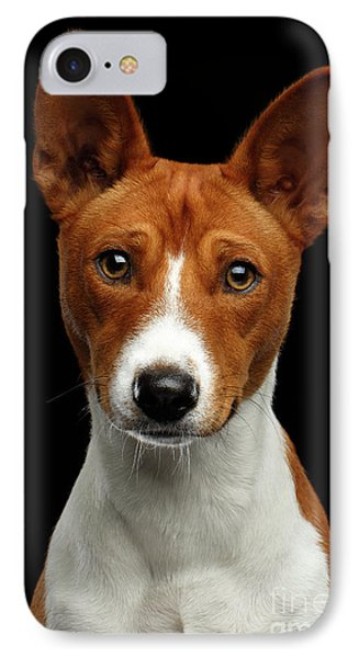 Pedigree White With Red Basenji Dog On Isolated Black Background IPhone Case