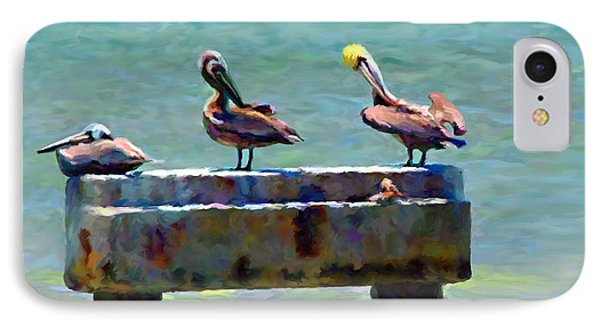 3 Pelicans IPhone Case by David  Van Hulst