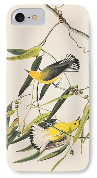 Prothonotary Warbler IPhone 7 Case by John James Audubon