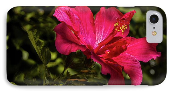 IPhone Case featuring the photograph Red Hibiscus by Robert Bales