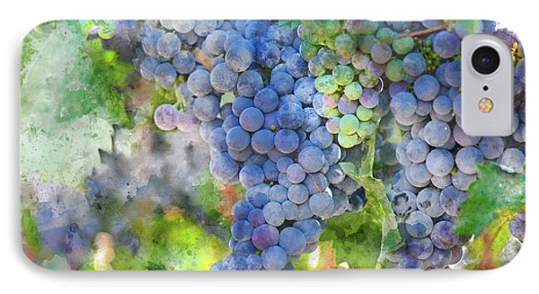 Red Wine Grapes On The Vine IPhone Case by Brandon Bourdages