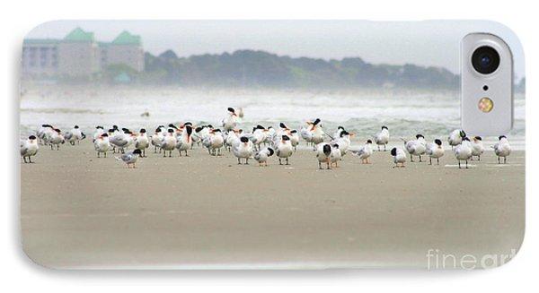 Seabirds On Hilton Head Shoreline IPhone Case by Angela Rath